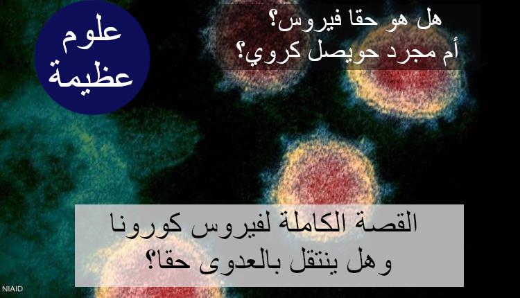 sarcov2fact.jpg (88 KB) القصة الكاملة لفيروس كورونا المزعوم، وهل ينتقل بالعدوى؟ هل هو فيروس أم مجرد حويصل كروي؟