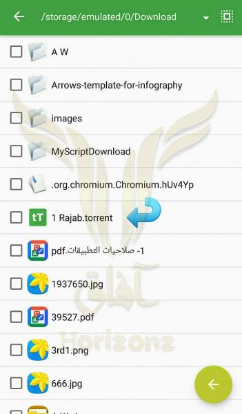 wm8GB.jpg (62 KB)
