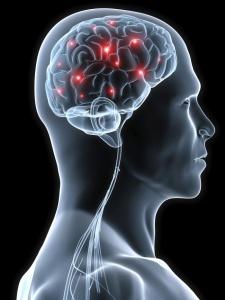تأثيرات-المواد-الكيميائية-على-الجهاز-العصبي.jpg (22 KB)