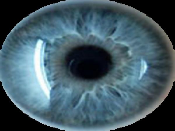 blue_eyes_flat_earth.png (176 KB) ما الذي يعنيه أن تكون الأرض المسطحة ؟