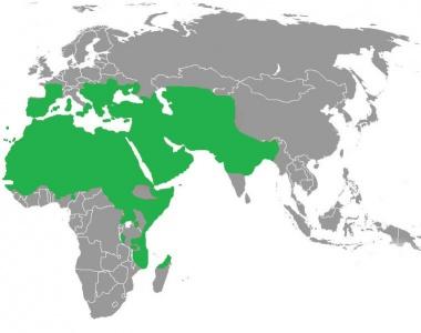 largest_extension_of_Islam_caliphate.jpg (28 KB) الحدود الجغرافية للخلافة الإسلامية على مر التاريخ - منذ عهد الرسول