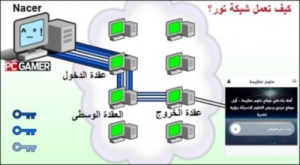 شرح شبكة تور ومتصفح تور والإتصال الامن